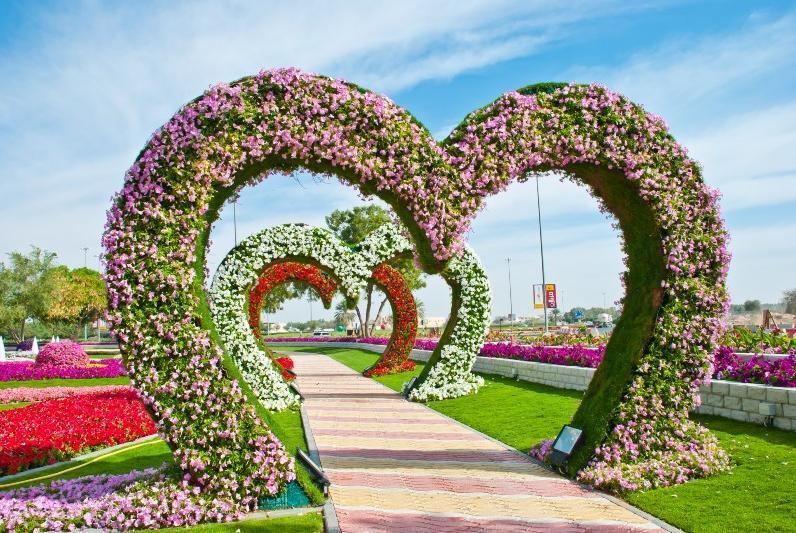 Самый большой в мире цветник: Фото