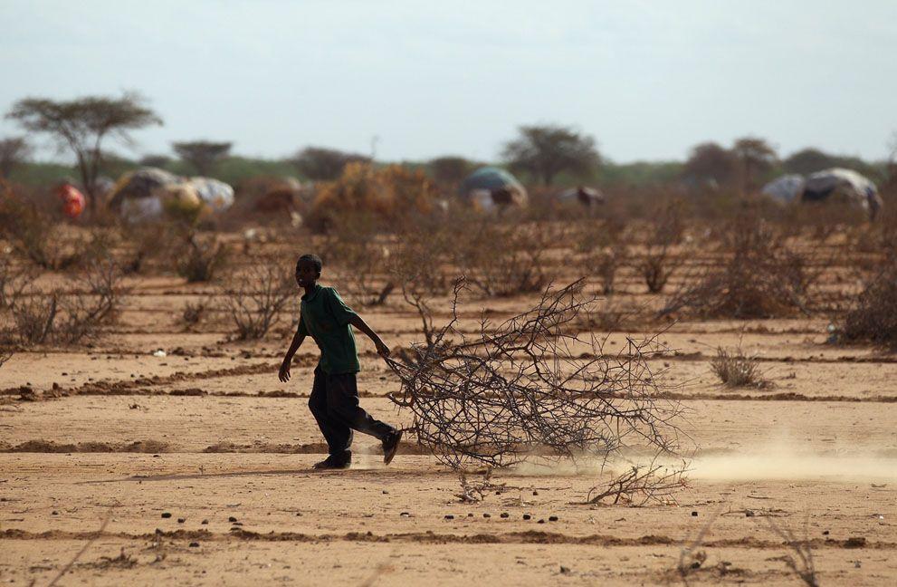 Голод в Восточной Африке