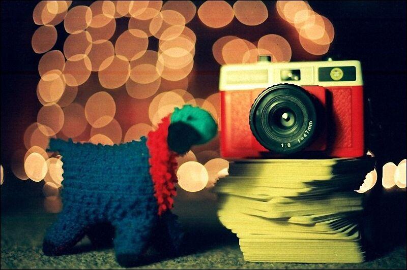 Лучшие примеры фотографий с боке