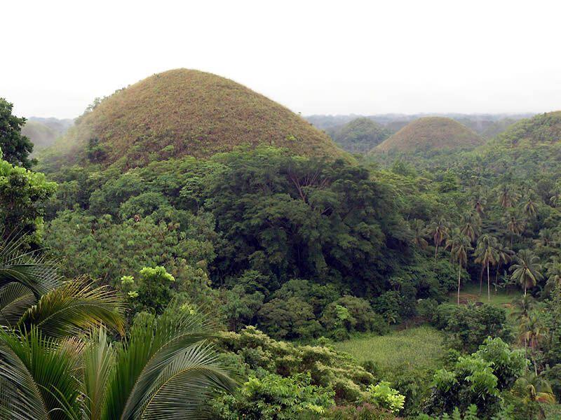 Шоколадні пагорби острова Бохоль