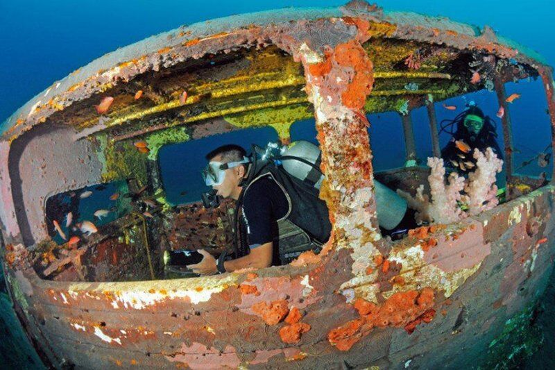 затонувшие автомобили фото семейная собака