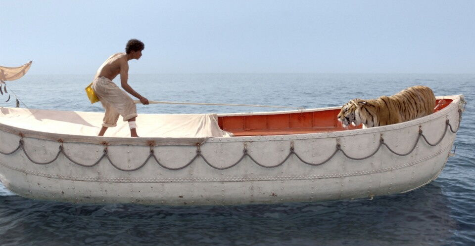 life of pi essays on survival