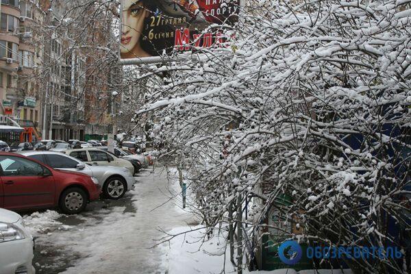 Зима в Киеве: падают деревья, крыши, люди