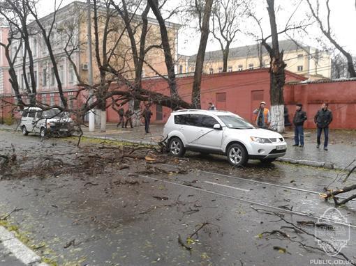 В Одесі ураган повалив дерева і залишив людей без світла. Фото