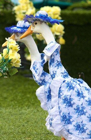 Гуси в свадебных нарядах показали настоящее шоу. Фото. Видео
