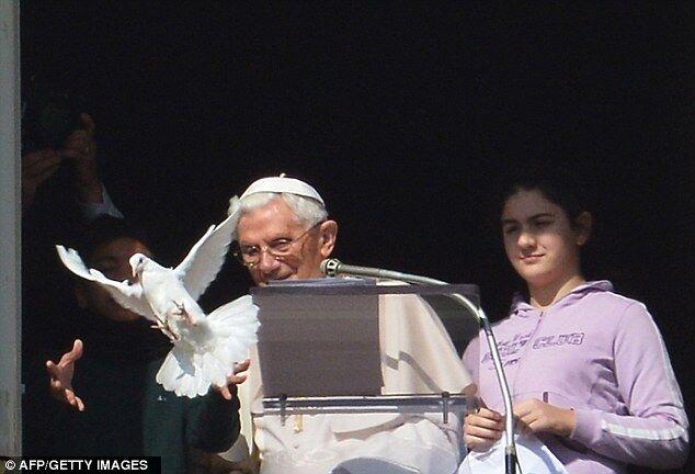 Голубь мира Папы Римского чуть не стал завтраком чайки