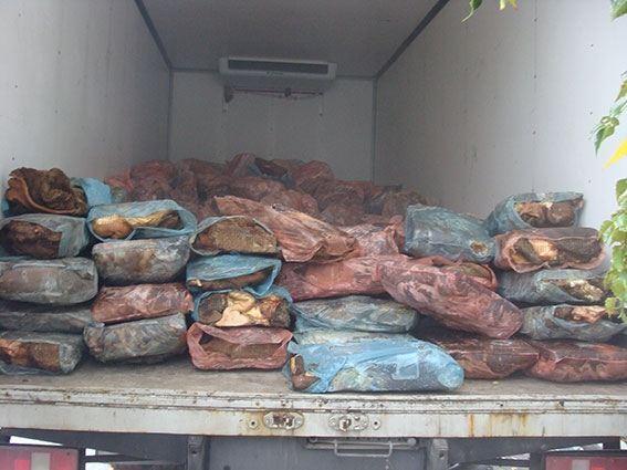 На Винниччине задержали шесть тонн некачественного мяса