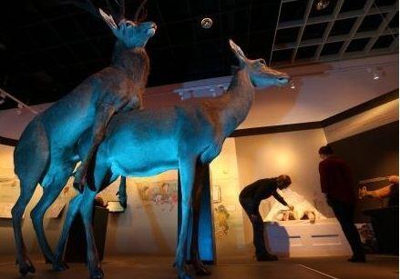 Скандальная выставка секса среди животных открылась в Германии