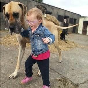 Страдающую эпилепсией 3-летнюю девочку регулярно спасает ее пес