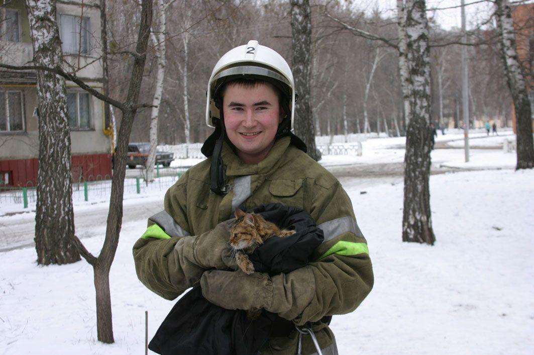 У Полтаві пожежні зняли оселилася на дереві кішку