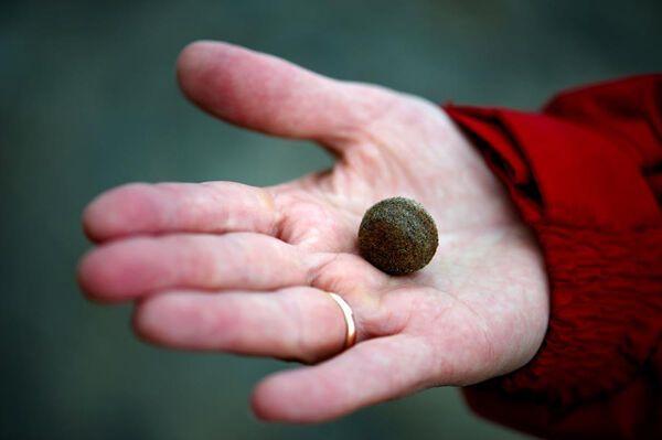 Загадочные шары на острове Чампа