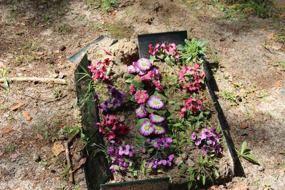На Житомирщині затримали трьох осіб за наругу над могилами