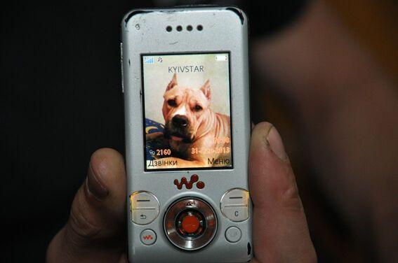 У Тернополі на міліціонерів нацькували бійцівську собаку: їм довелося відстрілюватися
