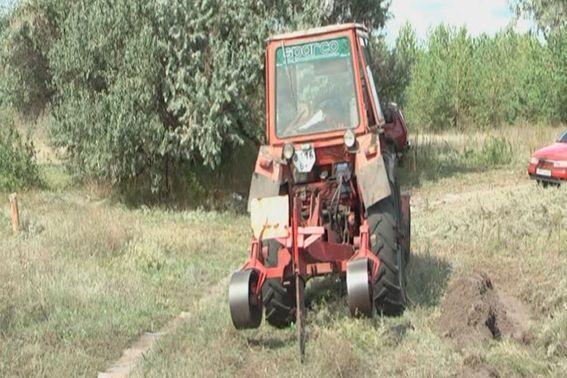 На Луганщині знайшли плантацію більше мільйона кущів конопель