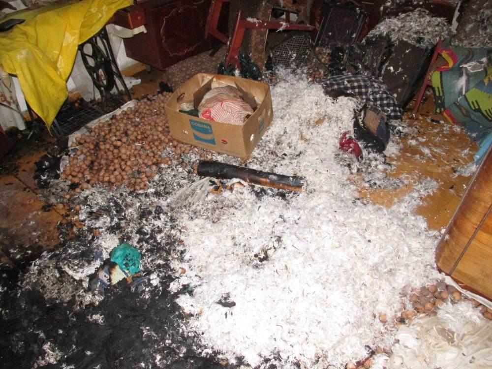 У Житомирі через замикання проводки згорів будинок