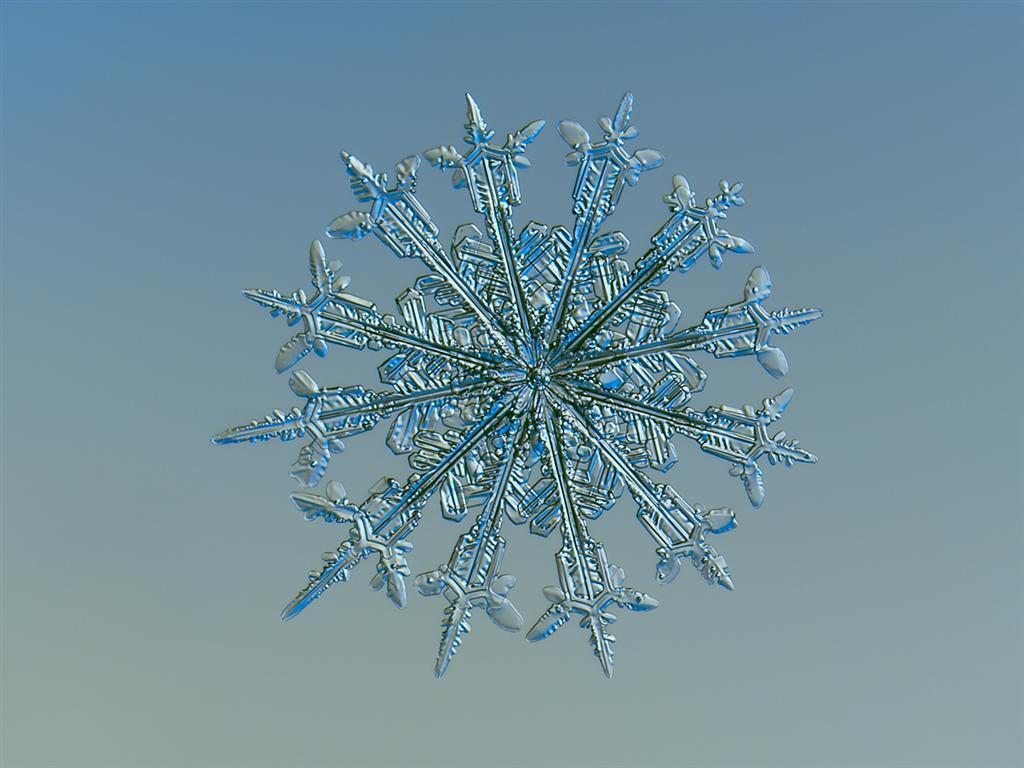 часть картинка в виде снежинки это