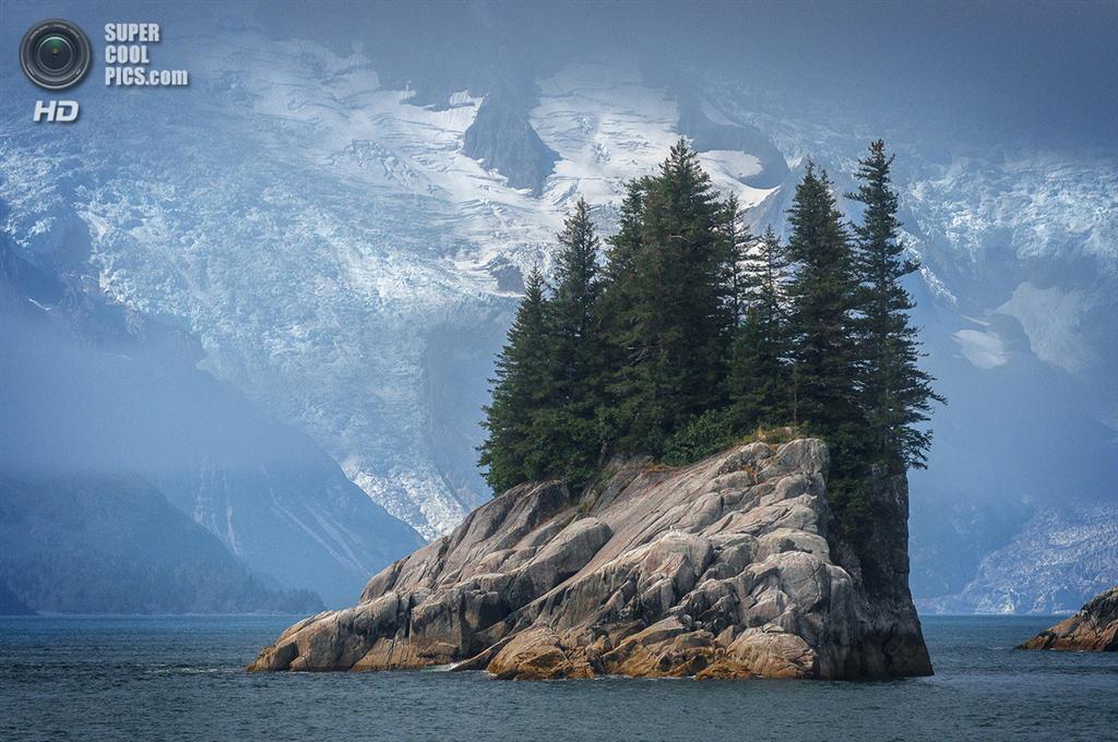Переможці фотоконкурсу Фонду національних парків