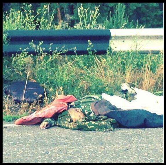 В Счастье тела террористов лежат на дороге, забрать некому – журналистка