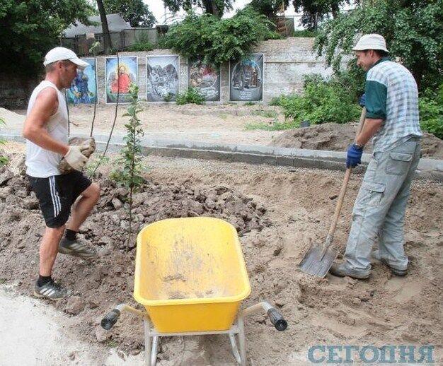 В Киеве на месте мусорной свалки появился сад, посвященный Небесной Сотне