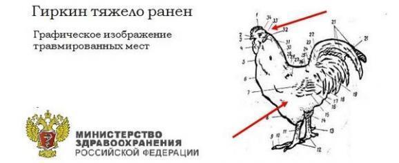 У мережі з'явилися фотожаби на тему поранення Гіркіна