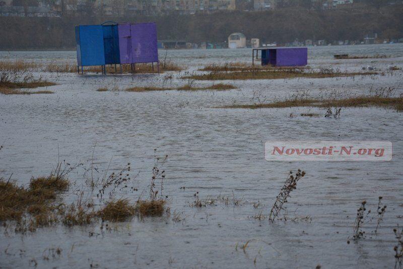 Ураган в Николаеве - вырванные с корнем деревья и затопленный пляж: опубликованы фото
