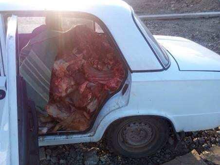 """СБУ перехопила машину фаршировану м'ясом, яка їхала до терористів """"ЛНР"""": фотофакт"""