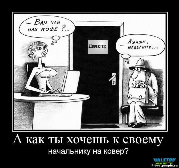 Анекдоты про директора