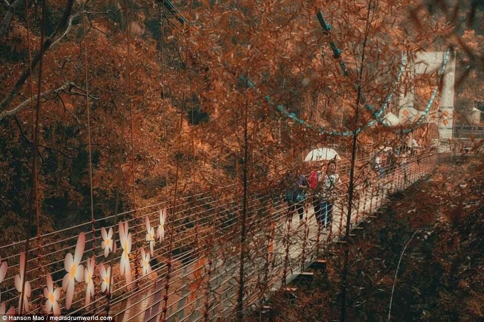 На Тайване открыли стеклянный мост, от которого у туристов захватывает дух