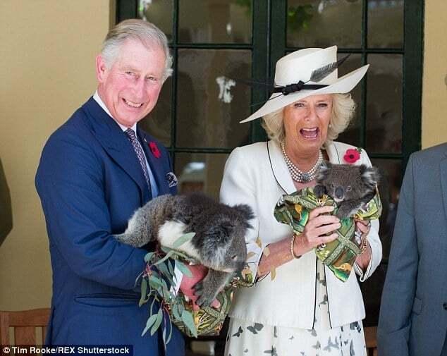 Дружина принца Чарльза осоромилася під час візиту до Нової Зеландії: фотофакт