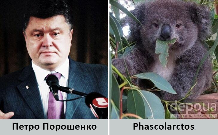 Миші та бульдоги: Яценюка, Меркель та інших політиків порівняли з тваринами