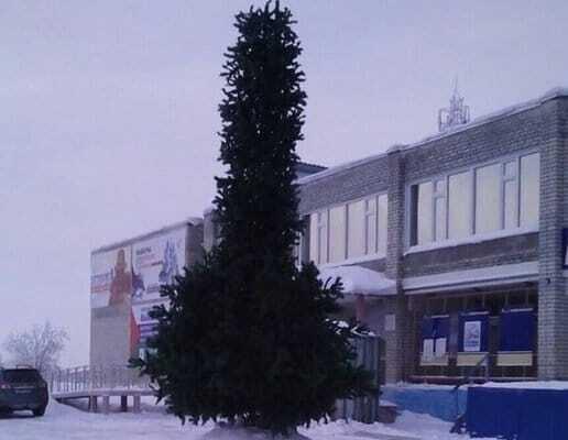 Данина х**лу: в російському Ноябрьську встановили ялинку-фалос. Фотофакт