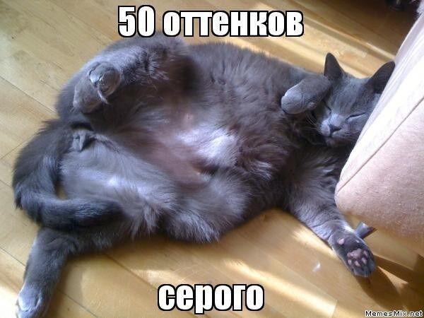 """В Сети появились фотожабы на фильм """"50 оттенков серого"""""""