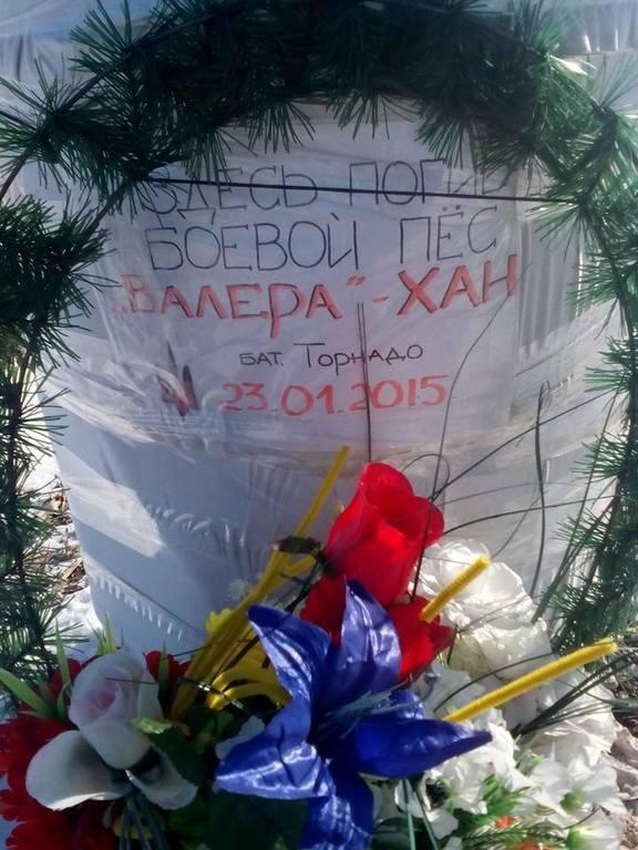 """Бойцы подразделения """"Торнадо"""" похоронили своего """"боевого товарища"""" - овчарку: фотофакты"""