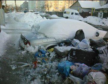У Росії на смітник викинули Jaguar. Фотофакт