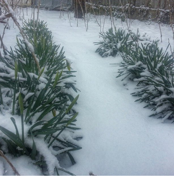 Снежная буря оставила без света почти 20 тысяч крымчан