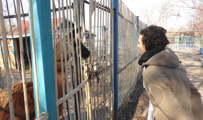 Разыскиваемая СБУ Чичерина уже опять спокойно прогуливается по Луганску