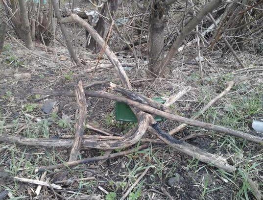У парках Донецька до свят на деревах розвісили міни: фотофакт