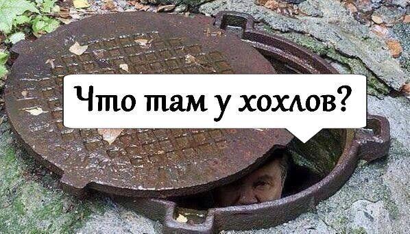"""В сети троллят озабоченных Украиной россиян: ну """"чё там у хохлов"""""""