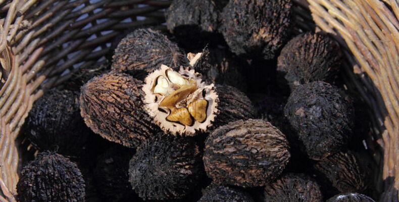 8 натуральных продуктов, уничтожающих паразитов в организме