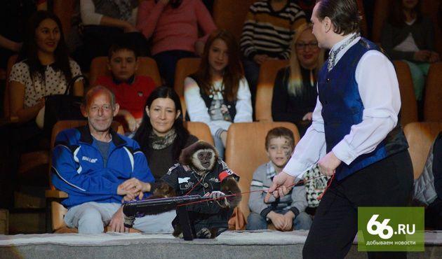В России для ветеранов устроили шоу с обезьянами-нацистами