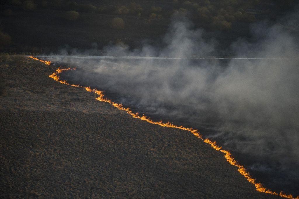 Пожар в зоне ЧАЭС: хроника событий, фото и видео