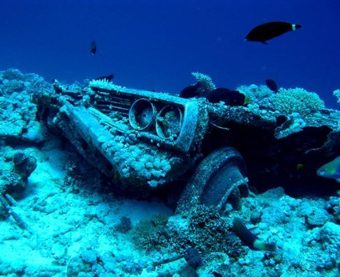 именно затонувшие автомобили фото родителей детей выстроены