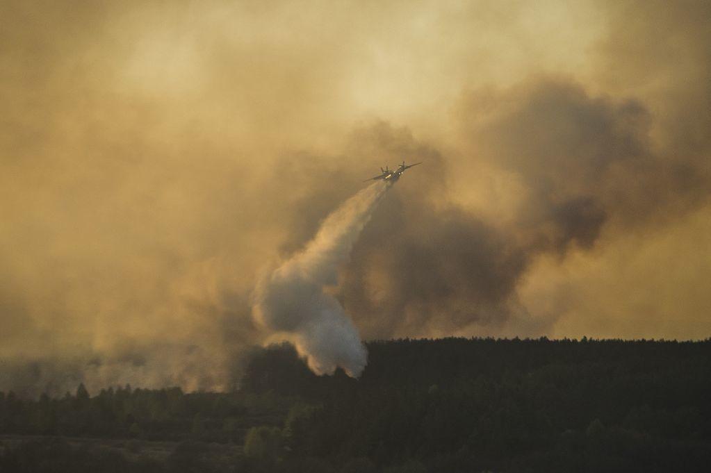 Глава ГосЧС заверил, что пожар в зоне ЧАЭС почти потушен