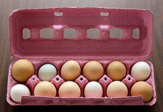 Смажь куриные яйца