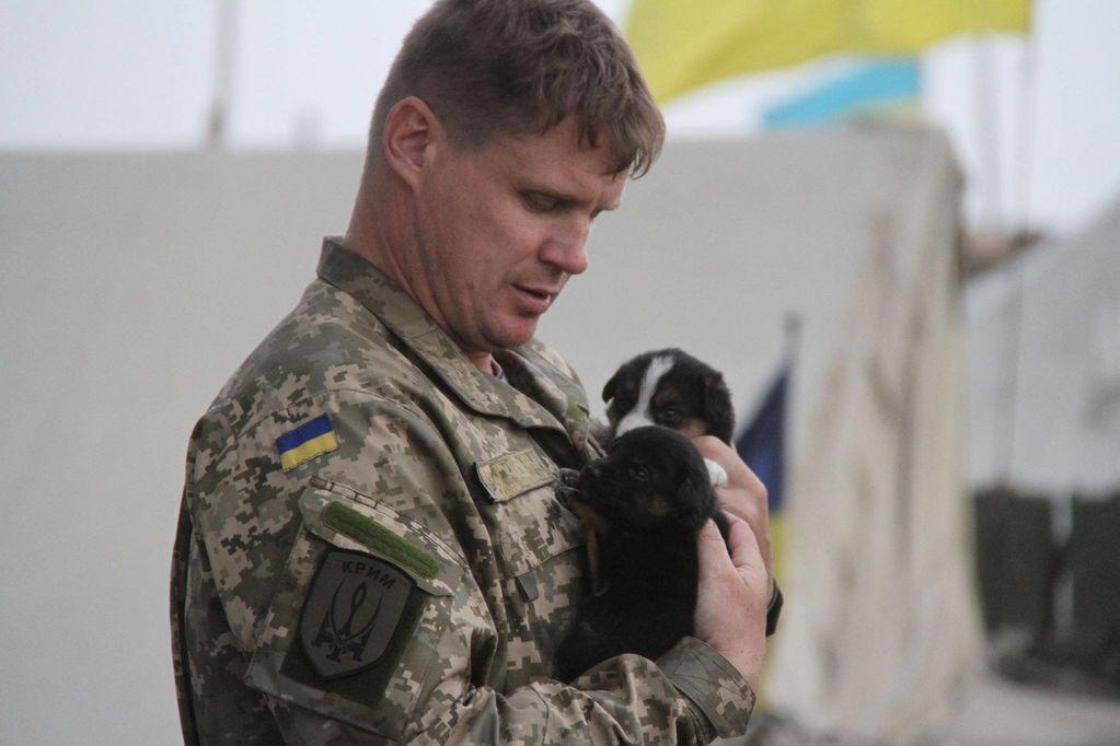 """Минобороны показало """"адских псов украинских карателей"""": фотофакт"""