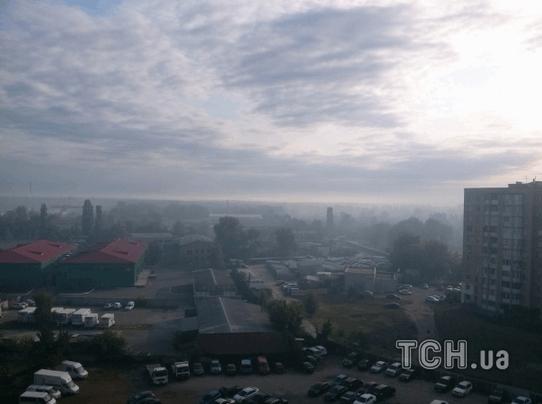 Дым в Киеве: неизвестные подожгли лес возле Быковни