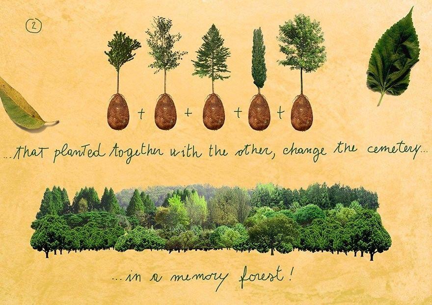 В Италии предложили выращивать деревья из… покойников