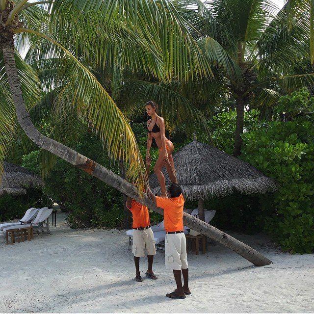 Ирина Шейк вылезла на пальму и показала загоревшую попу