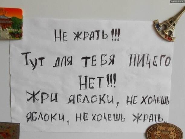 Веселые записки на холодильнике: народное творчество во всей красе