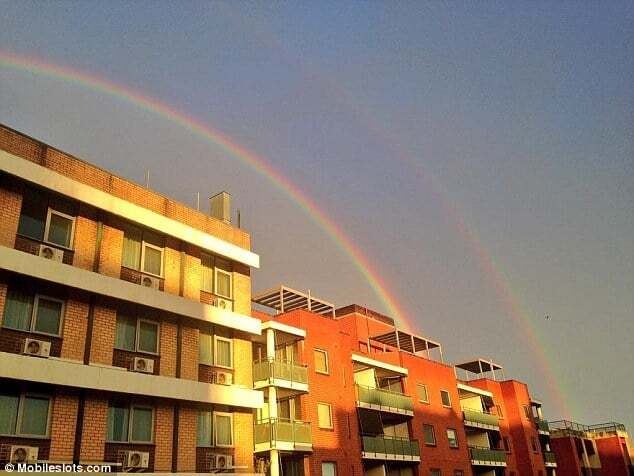 Море, радуга и кирпичная стена: что видят люди из окна на работе